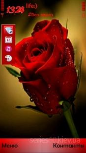 Rose ver 2