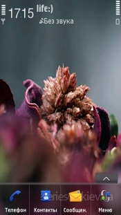 Flower by foodgoes