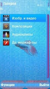 Beatiful fish