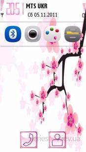 Cherry Blossom by Saby