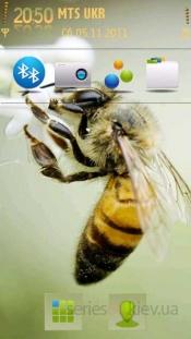 Bee by Hank