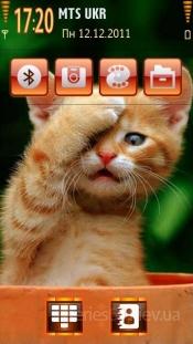 Red kitten by Galina53