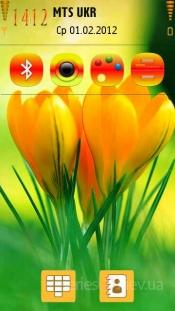 Spring flower by Mx