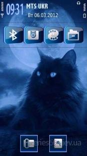 Nice cat by Galina53